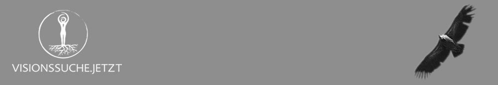 Visionssuche Logo